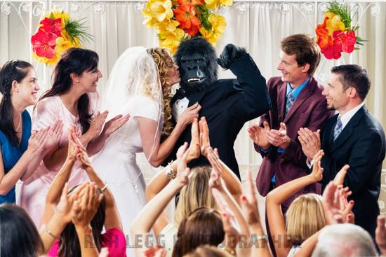 gorilla-wedding-day